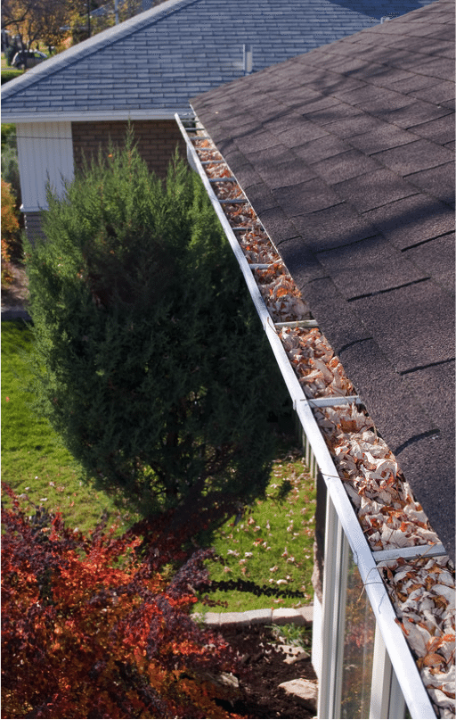 Post Holiday Gutter Cleaning